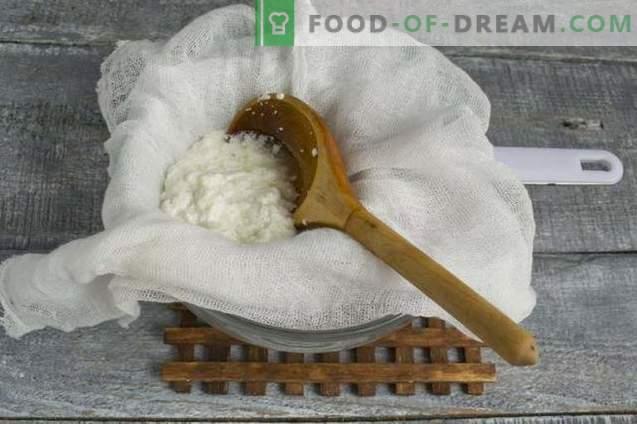 Queijo kefir caseiro e queijo de leite