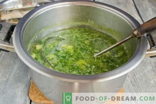 Sopas de Espinafre Verde