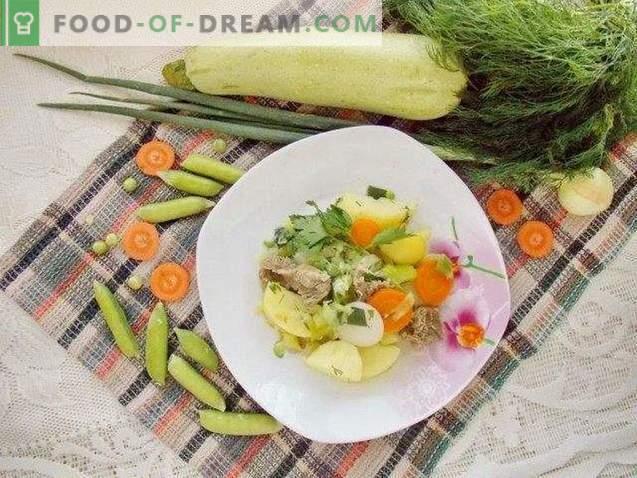 Ensopado de verão de legumes jovens