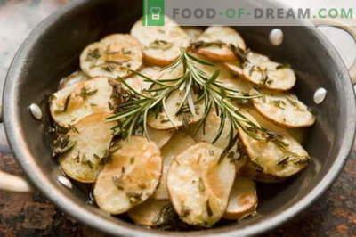 Alecrim - descrição, propriedades, uso na culinária. Receitas com alecrim.