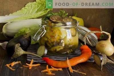 Prato de vegetais de pimentos recheados com berinjelas para o inverno