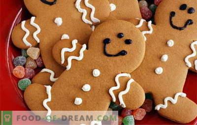 Biscoitos de gengibre - as melhores receitas. Como cozinhar biscoitos de gengibre.