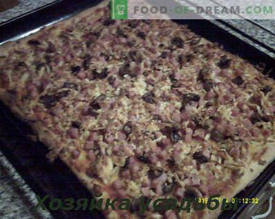 Pizza caseira, receita culinária com fotos passo a passo
