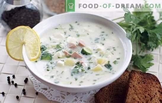 Okroshka con mostarda - zuppa piccante fredda. Opzioni okroshka con senape su acqua minerale, succo di mela, kefir