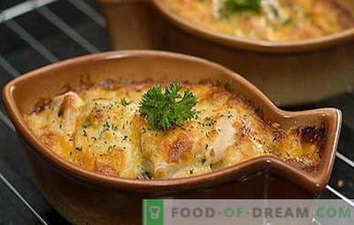 ¡El lucio en crema agria es un delicioso depredador! Recetas interesantes de lucios en crema agria en el horno y en la sartén: rellenas de papas