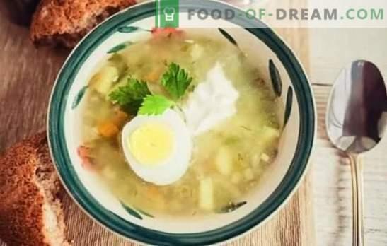 Pickle com cevadinha em um fogão lento - rápido e saboroso. Rassolniki com cevada em um fogão lento com carne de porco, carne, frango, cogumelos