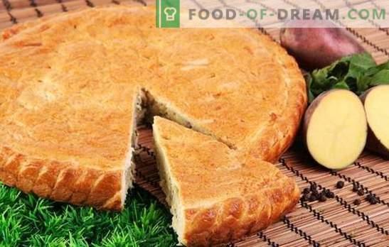 Tortas de batata em kefir é um equivalente da Ossétia! Carne, peixe ou verdura - nas receitas de tortas de batata no kefir