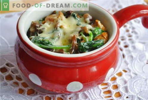 Julienne de cogumelos - as melhores receitas. Como corretamente e saboroso cozinhar juliens com cogumelos.
