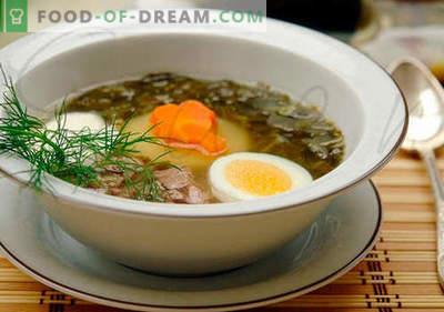 Sopa azeda - receitas comprovadas. Como corretamente e saboroso cozinhar sopa azeda.
