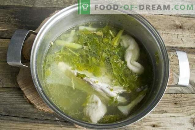 Sopa vegetal de verão em caldo de galinha