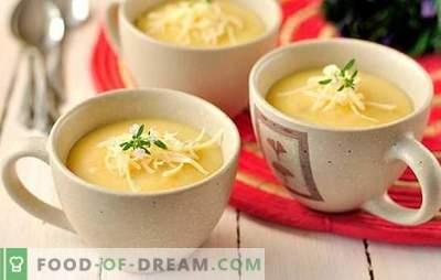Sopa de batata: grossa ou fina? Uma seleção de receitas de sopa de batata amassada: com feijão, cogumelos, abobrinha, camarão