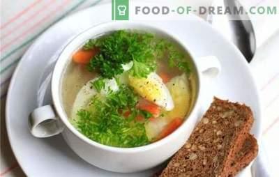 Sopa de frango com ovo - um prato para humor e saúde! Receitas diferentes para sopas de frango com ovos e legumes, cogumelos, cereais