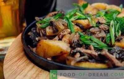 Carne frita com cebola em uma frigideira - todo mundo está feliz! Receitas de carne frita com cebola em uma panela com creme azedo e outro molho