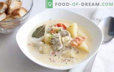 Sopa de filé de frango - ele e você vai gostar de mim! Receitas de sopa com filé de frango: arroz, queijo, cogumelo, vegetal, com feijão