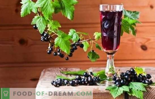 Currant tincture at home - rich color and taste. How to prepare a currant tincture at home on alcohol, vodka, moonshine