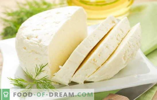 Parimad retseptid kodus valmistatud lehmapiimajuustule. Lehmapiim: juustu valmistamise põhireeglid