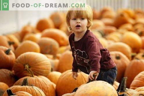 Purê de abóbora para crianças - as melhores receitas. Como corretamente e saboroso bebê purê de abóbora.