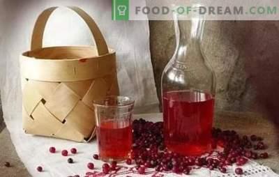 Tintura de mirtilo em casa: cozinhar segredos. Licor saboroso caseiro de lingonberry em vodka, álcool, conhaque