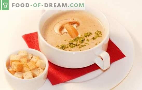 A sopa de creme de cogumelos é uma versão delicada do seu prato favorito. As melhores receitas de sopa de creme de cogumelos: com creme, com queijo, arroz, conhaque, camarão