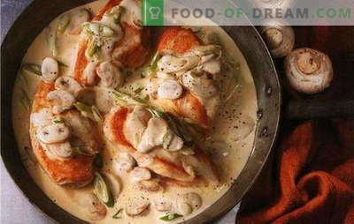 As melhores receitas de filé de frango em um molho cremoso. Como cozinhar filé de frango em um molho cremoso em uma panela e no forno