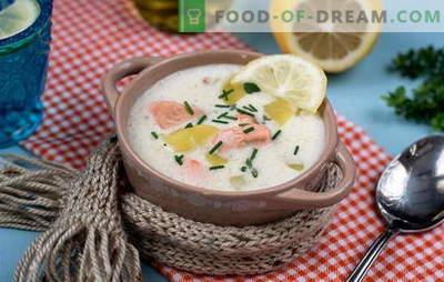 Cozinhando uma deliciosa sopa finlandesa: receitas. Sopas finlandesas de peixe vermelho fresco, frito, defumado e enlatado