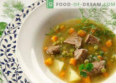 Sopas com carne - as melhores receitas. Como corretamente e saboroso cozinhar sopas com carne.