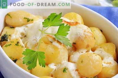 Kartul hapukoores - parimad retseptid. Kuidas õigesti ja maitsvaid küpsetada kartuleid hapukoores.
