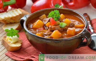 Hongaarse soep is ongewoon, maar smakelijk! Verschillende recepten van Hongaarse soepen: met rundvlees, vis, bonen, spinazie, kersen