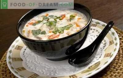Sopa de leite de coco é um jogo de gosto! Receitas para diferentes sopas com leite de coco para um cardápio exótico