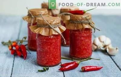 Adjika é notas afiadas na culinária. Tradicionais multinacionais e receitas únicas adzhika afiada, muito afiada e ainda mais nítida!
