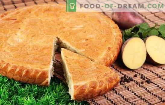Torta de batata com batatas - nem uma migalha! Receitas simples de tortas gelatinosas em maionese, creme azedo, kefir e ryazhenka