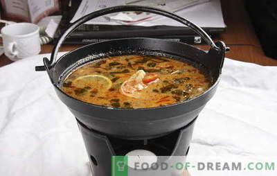 A sopa tailandesa é exótica na sua cozinha. Receitas para sopas tailandesas com carne, peixe, frango, marisco, legumes e cogumelos