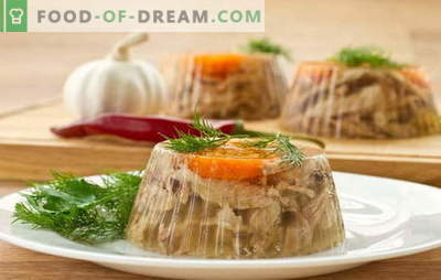 Fará geléia deliciosa com gelatina? Receitas únicas e simples de gelatina com gelatina: carne bovina, vegetal, frango