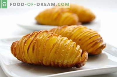 Aardappel in een slow cooker - de beste recepten. Hoe goed en smakelijk aardappelen in een slowcooker koken.