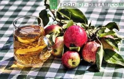 Fazendo cidra de maçã caseira - produto natural! Como preparar matérias-primas para cidra de maçã em casa