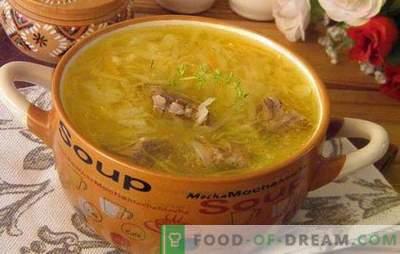 Sopa de repolho azedo: prepare a sopa mais deliciosa! Receitas, segredos e intricados de cozinhar repolho azedo repolho azedo