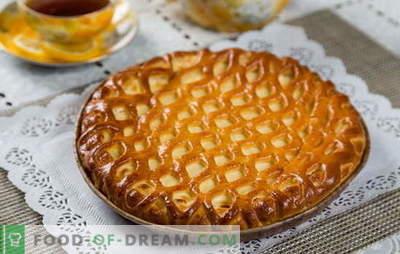 Torta com queijo cottage com pressa - uma massa útil sem o incômodo. Como cozinhar uma deliciosa torta com queijo cottage com pressa
