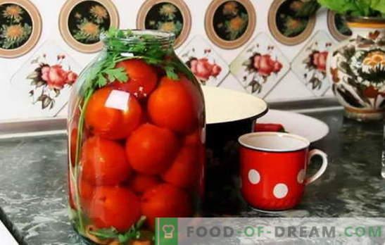 As melhores receitas para tomates sob a tampa do capron. Como preparar tomates sob a tampa do capron: dicas de recepcionistas experientes