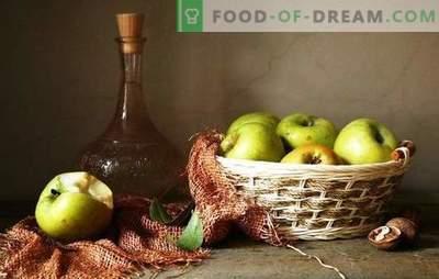 Temporada de maçã - fazemos um buquê de vinho de maçãs sem prensar. Tecnologia de vinho caseiro de maçãs sem suco - as vantagens e desvantagens de fazer vinho a partir de polpa de maçã