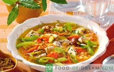 Lentilhas com frango: sopa, assado, ensopado, caçarola. Receitas simples e complexas para cozinhar lentilhas com frango para todos os dias