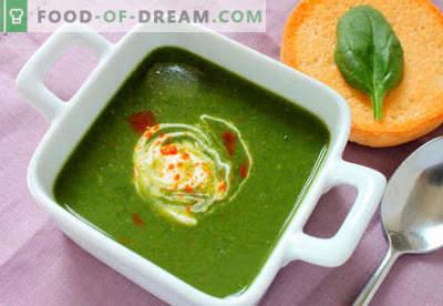 Sopa de espinafre - Receitas comprovadas. Como corretamente e saboroso cozinhar sopa de espinafre.