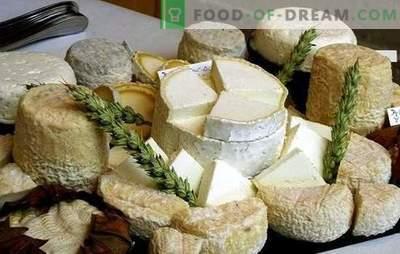 Como fazer queijo de cabra em casa: idéias para pequenas empresas, levando em conta as sanções. Queijo de cabra caseiro - melhor!
