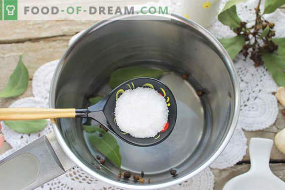 Champignon marinado caseiro por 1 dia