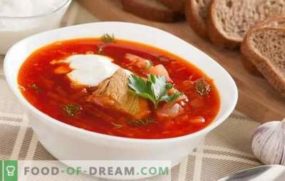 Borsch com carne de porco - é especial para todas as anfitriãs! Receitas ricas, grossas e nutritivas borscht de porco