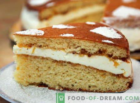 Bolo de esponja - as melhores receitas. Como cozinhar corretamente e saboroso pão de ló.
