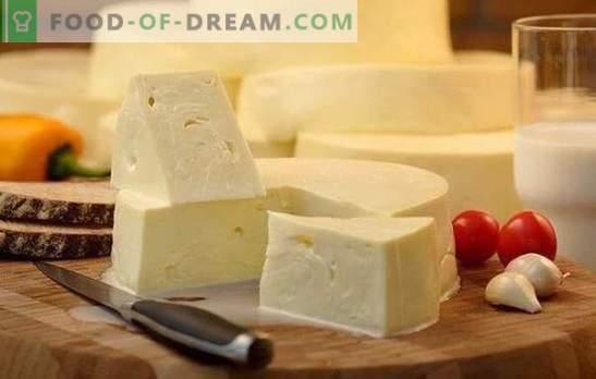 Cómo cocinar rápidamente el suluguni en casa: la receta para el queso blanco joven. Cocinar queso suave suluguni en casa