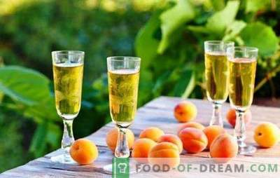 Home winemakers reveal the secrets of simple apricot wines. Recipes for different homemade apricot wines