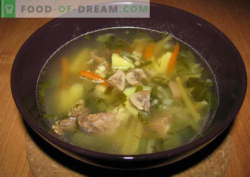 Pickle com rins - as melhores receitas. Como corretamente e saboroso cozinhar picles com rim