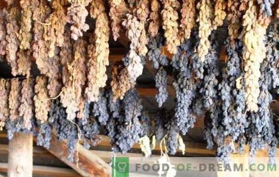Jak zrobić rodzynki z winogron w domu - oszczędzaj żniwa! Wszystkie sposoby i wskazówki, jak zrobić dobre rodzynki z winogron w domu