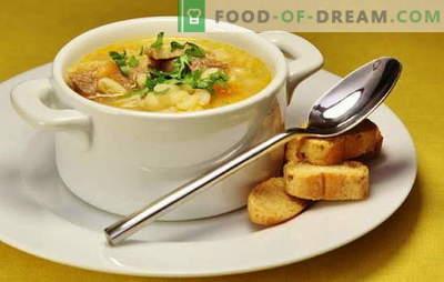 Sopa de pato: vegetal, com espargos, arroz, ervilha, picante. Receitas para sopas de pato saborosas e ricas, sopa de pato
